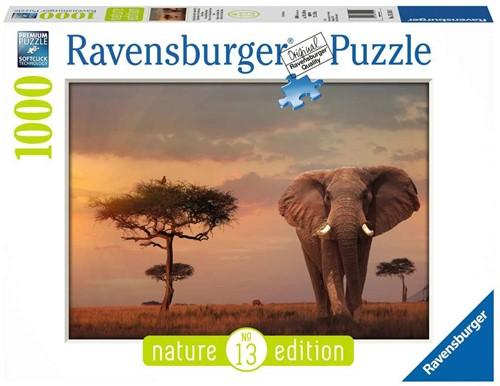 Ravensburger 00.015.159 Puzzle Fliesen-Puzzle 1000 Stück(e)