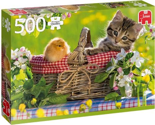 Premium Collection Fertig für ein Picknick 500 Teilen