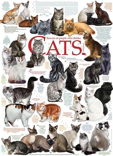 Cobble Hill puzzle 1000 Teile - Cat Quotes