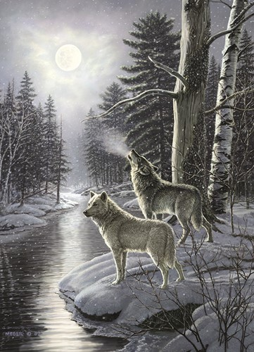 Cobble Hill puzzle 1000 Teile - Wolves by Moonlight