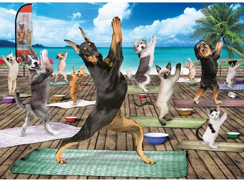 Eurographics puzzle XXL Teile - Yoga Spa - 500 Teile