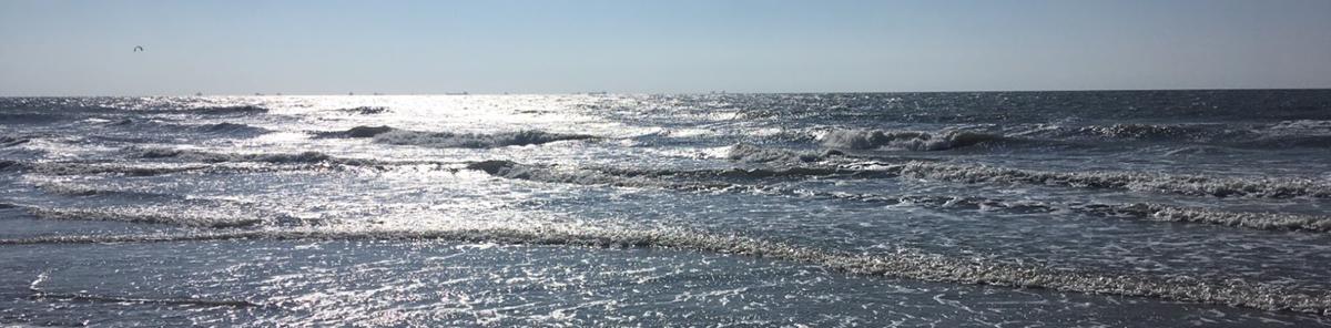 World Ocean Day 8. Juni 2021