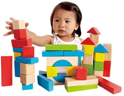 Hape houten bouwblokken Maple Blocks-3
