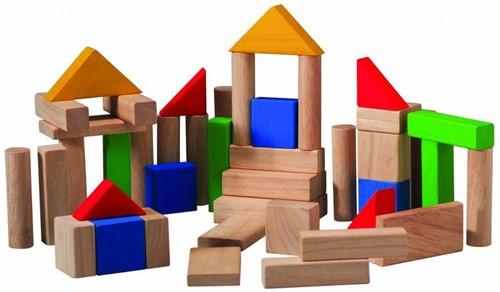 Plan Toys 50 Bunte Holzbausteine